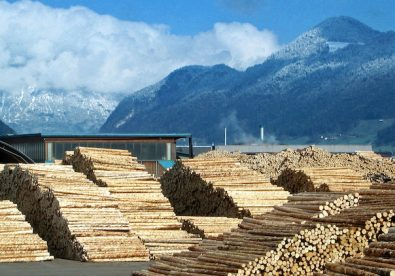 Biomass. By © R.Möhler, CC BY-SA 3.0, https://commons.wikimedia.org/w/index.php?curid=48969834